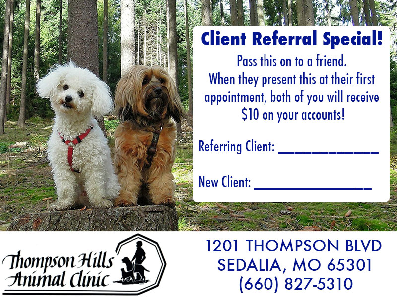 Thompson Hills Animal Clinic Referral Special